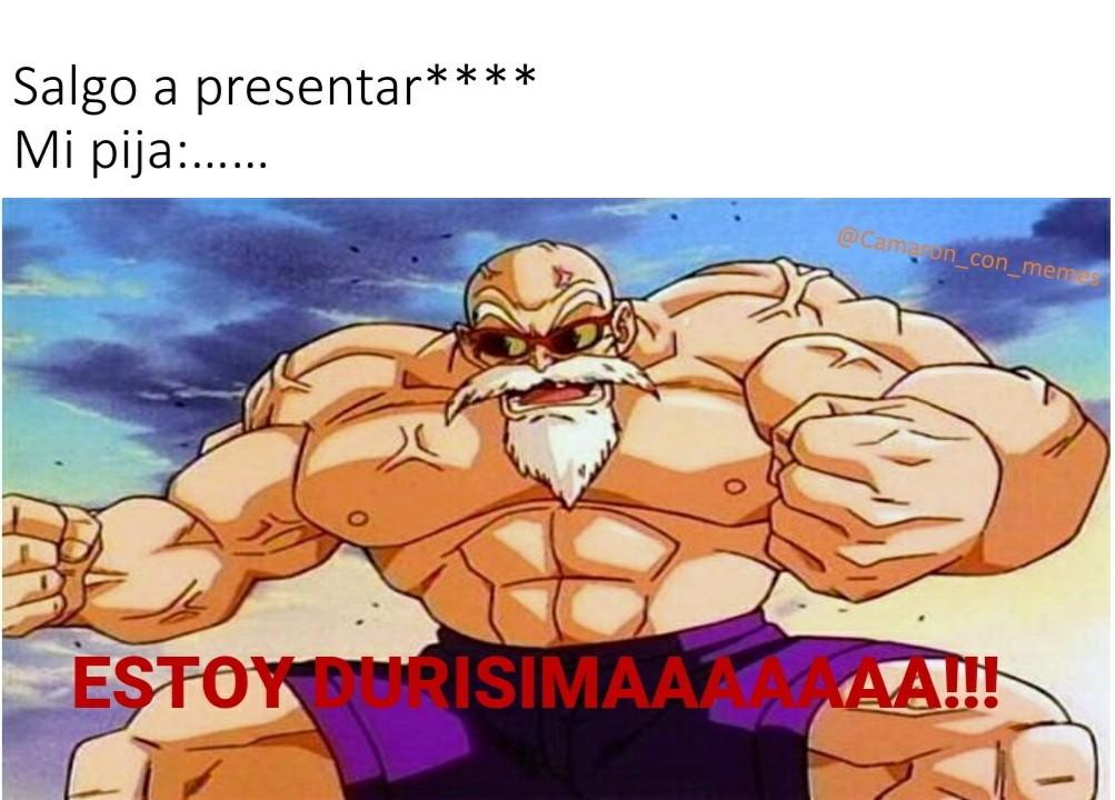 Pingas en presentaciones - meme