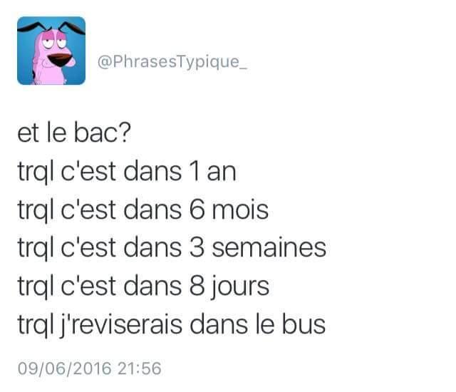 Bac ( Brevet Annuelle de la Connerie ) - meme
