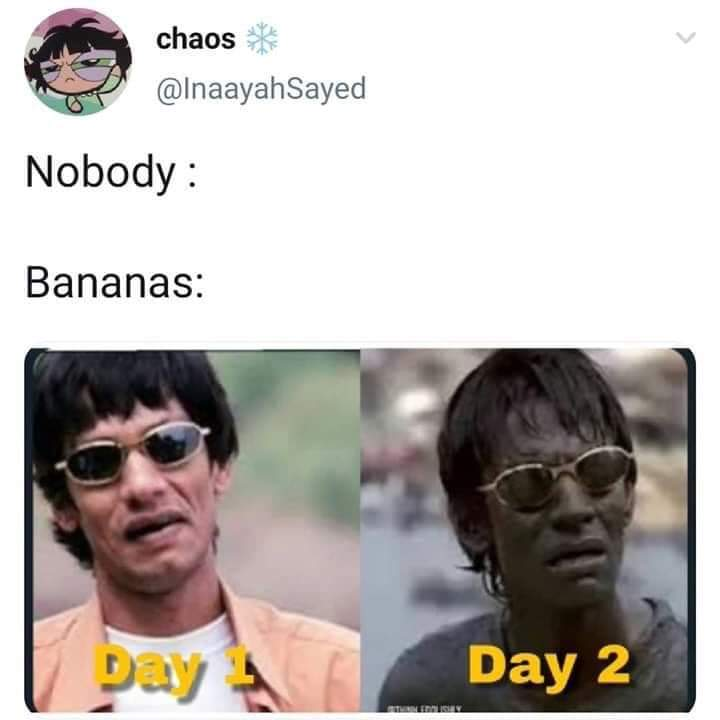 Bananas in a dong - meme
