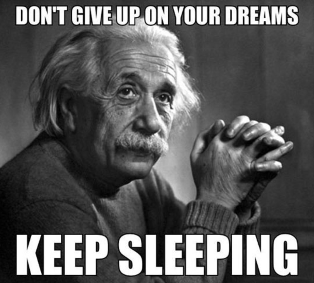 why make your dreams come true if you could just stay in the dream? - meme