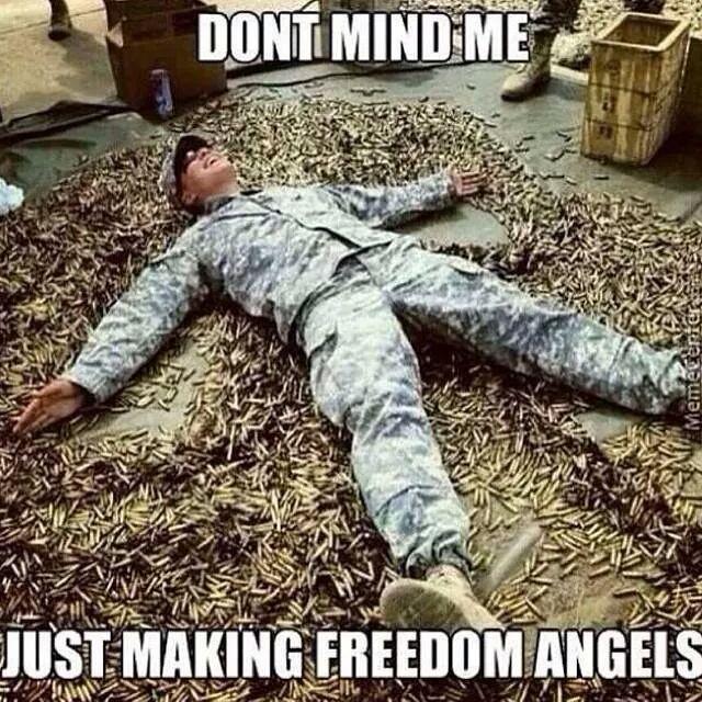 the freedom - meme
