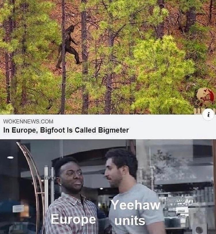 suck my yeehaw unit - meme