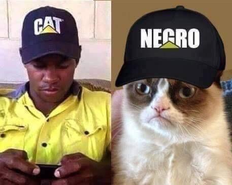 macri  nigga - meme