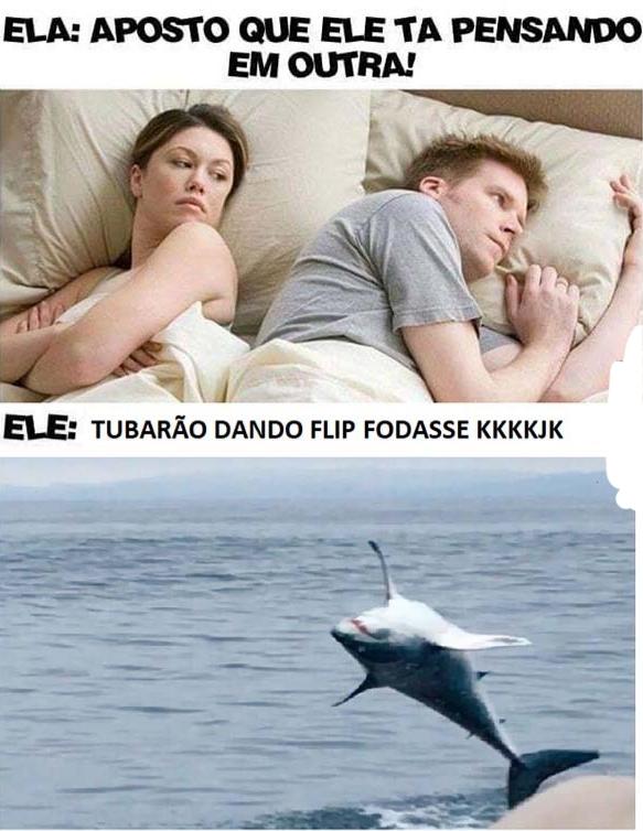 Tubarão - meme