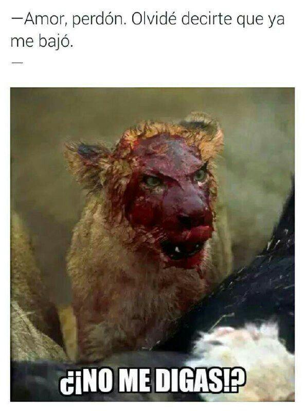 Hjjgcffghjjkgf - meme