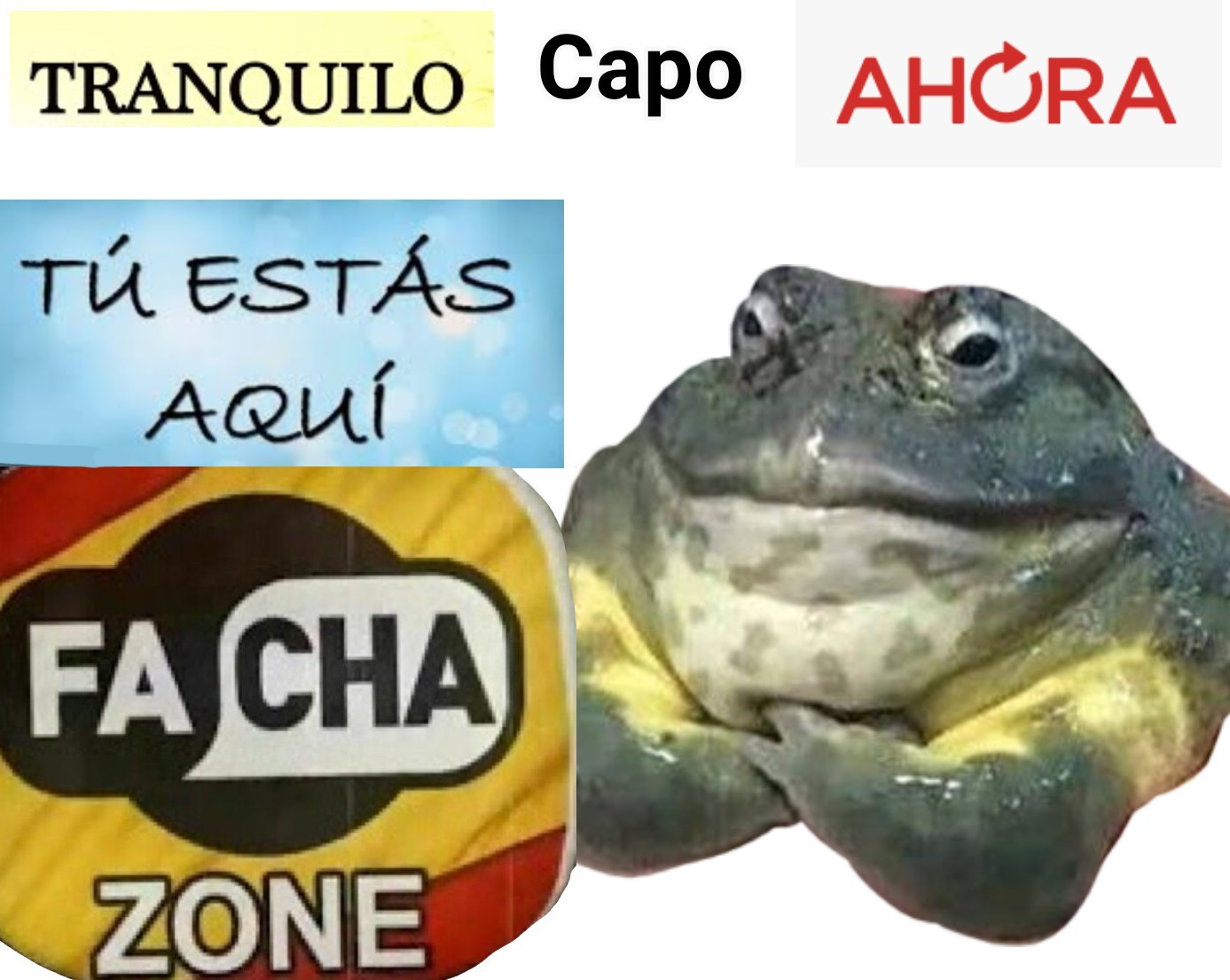 Facha Zone. - meme