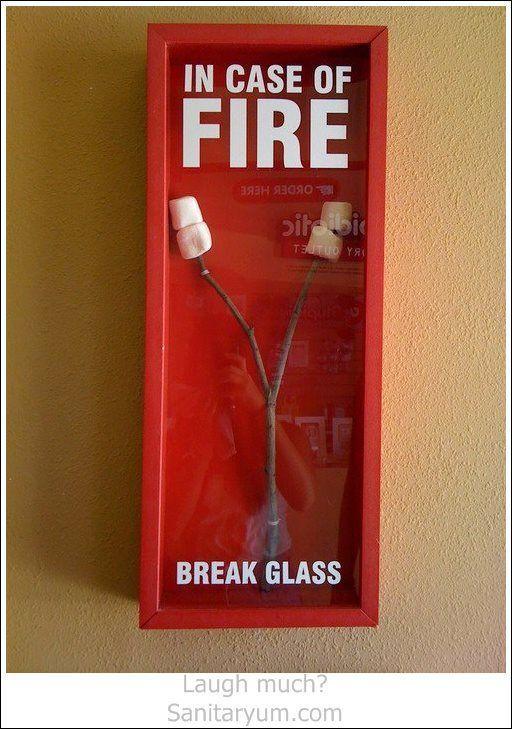 In case of fire... roast marshmallows - meme