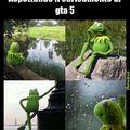 Waiting kermit