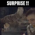 Suprise!!