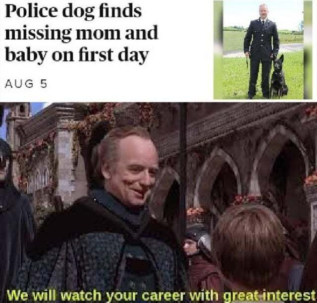 Police dog finds missing mom and baby on first day - meme