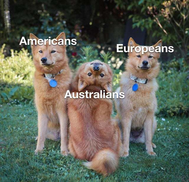 Cute Australians - meme