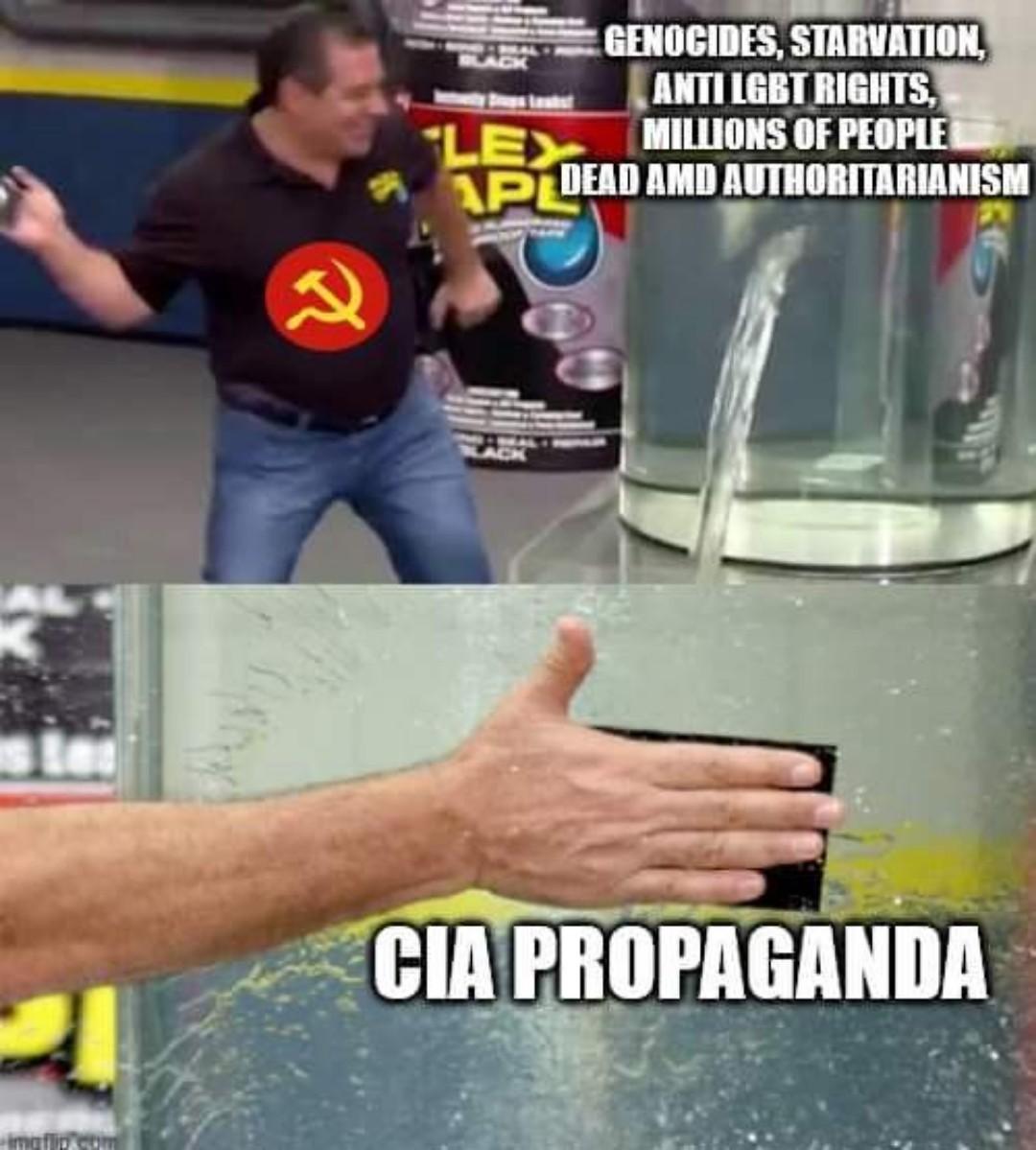 Western Commies be like - meme