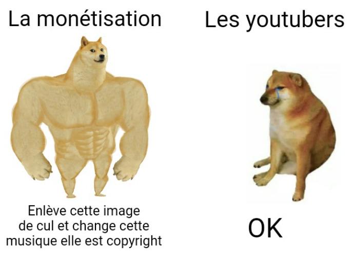 La monétisation suprême - meme