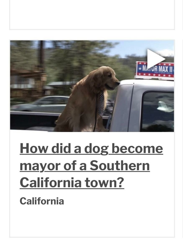 Mayor of Idyllwild, CA look it up - meme