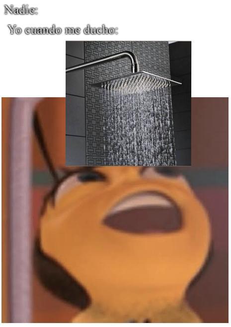 Lamento la mala calidad - meme