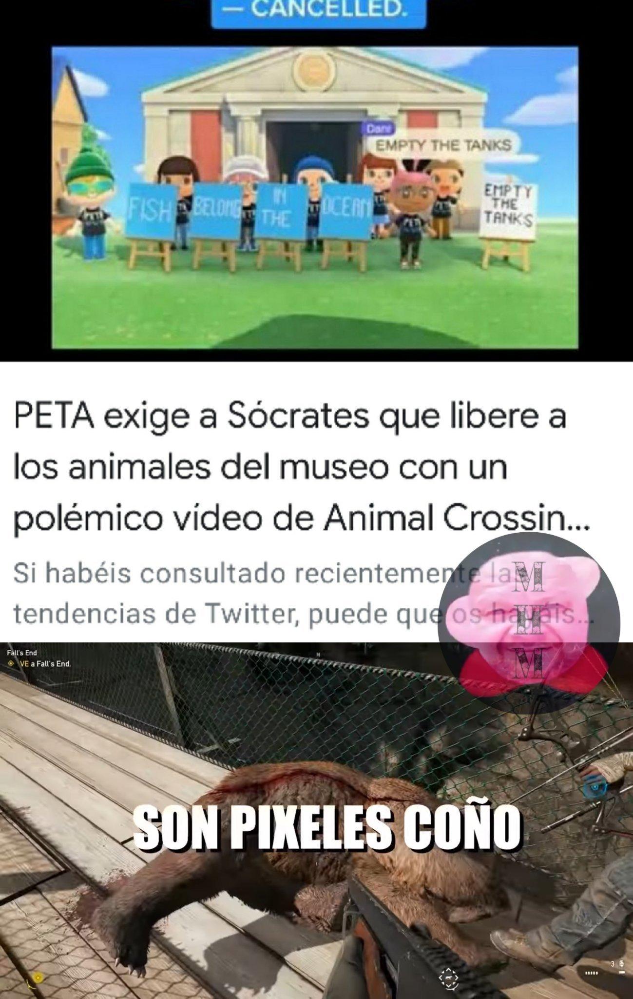 PETA haciendo su trabajo desde el hogar - meme