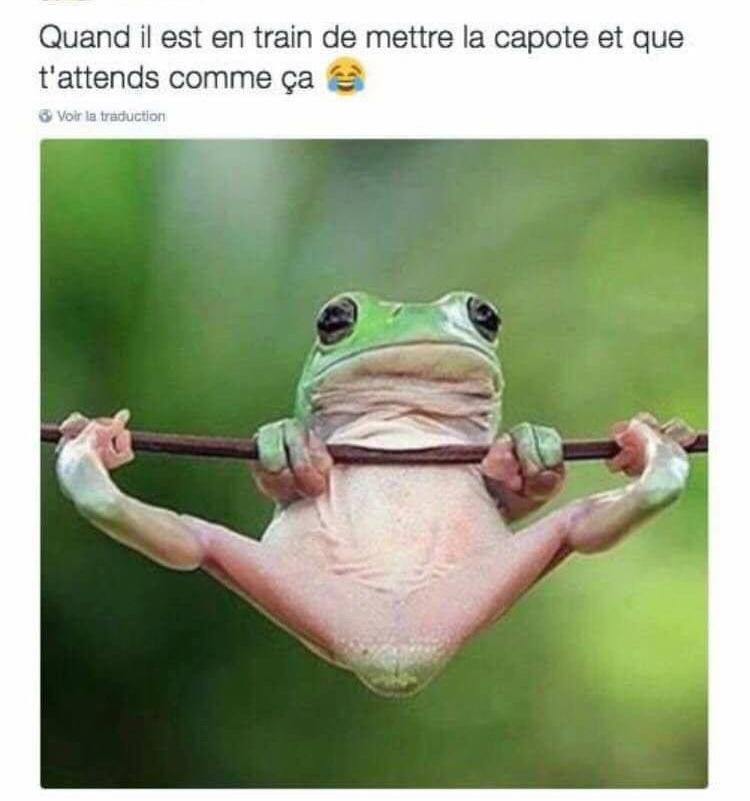 jpp - meme