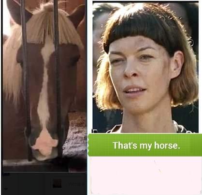 That's my horse. - meme