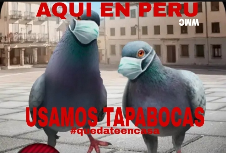 Sigue el ejemplo de la comida peruana - meme