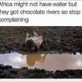 Africa fresca