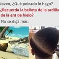 Ardillas ●