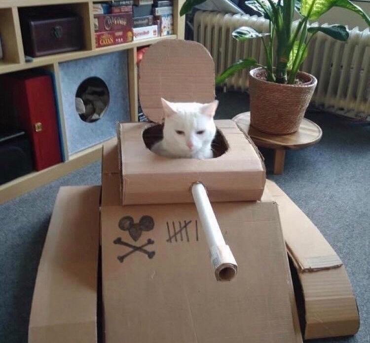 pussy destroyer - meme
