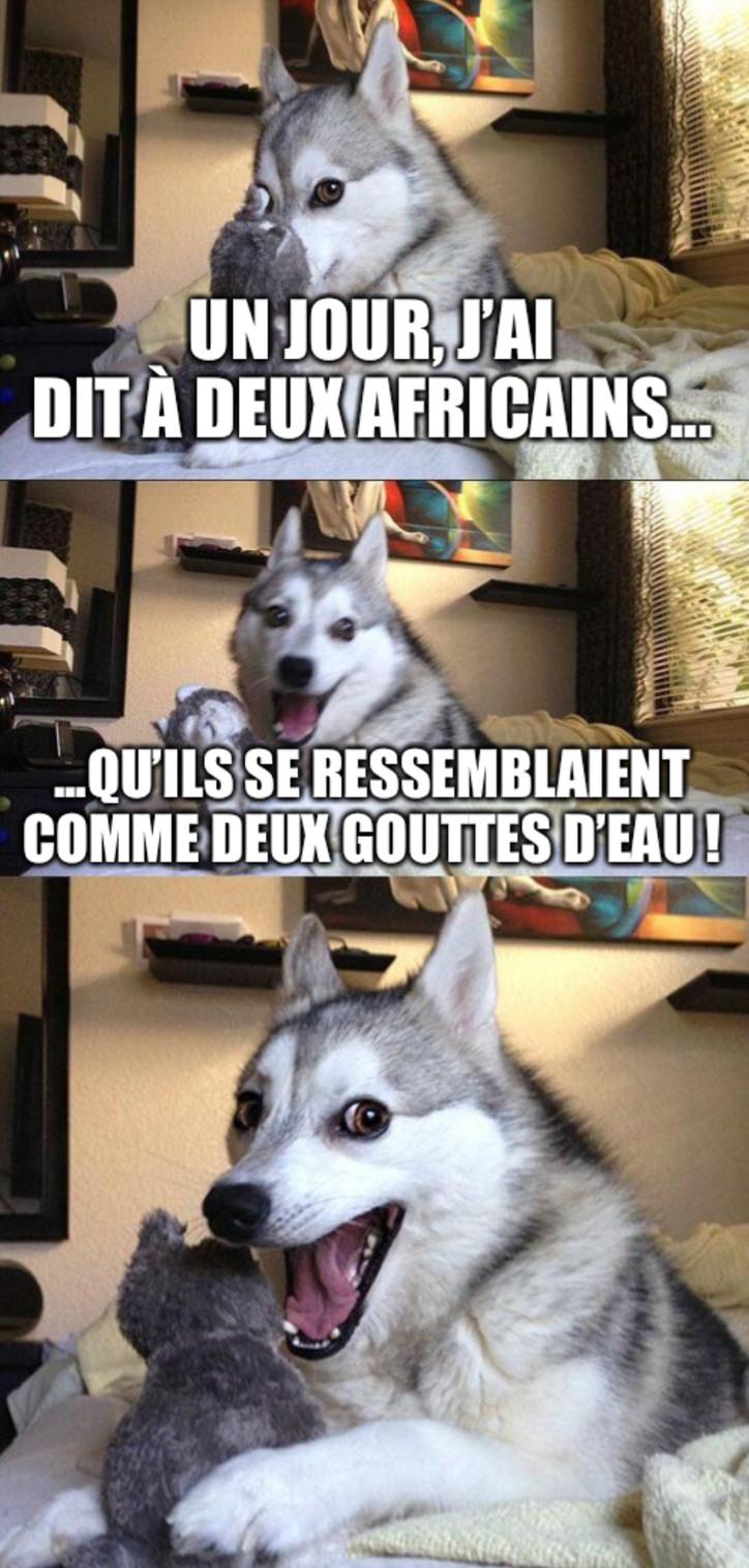 Blague nulle-5 #spécial humour noir - meme
