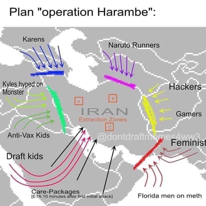 Operation: Harambe o.o - meme