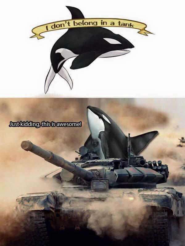 Tank you - meme