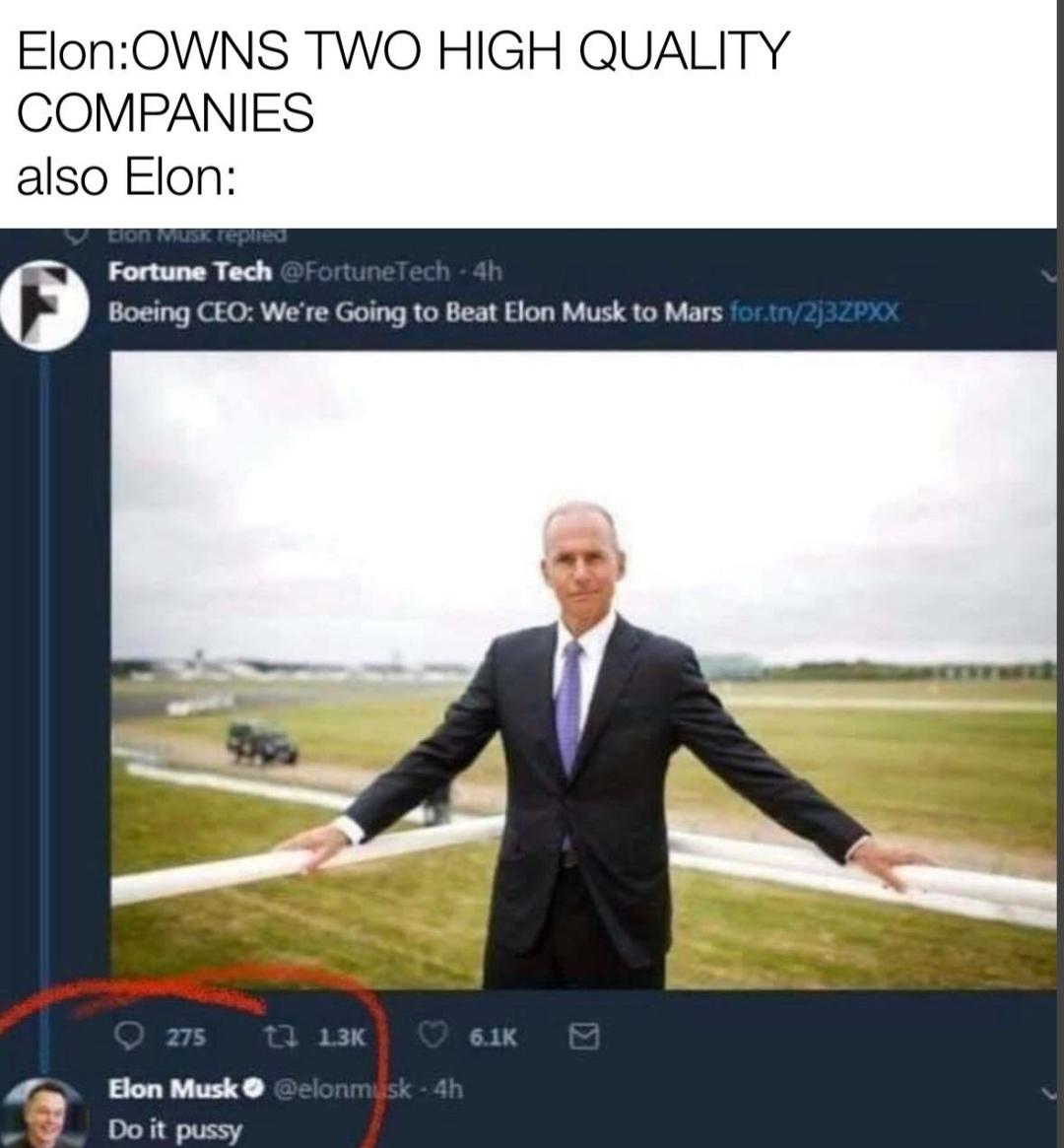 Elon - meme