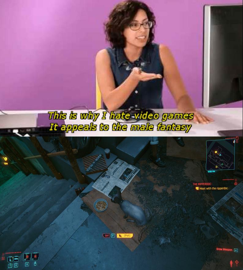 Cyberbonk - meme