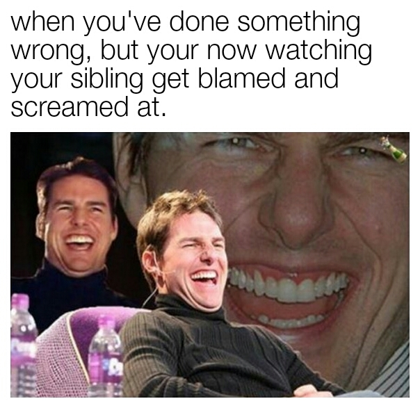 Siblings - meme