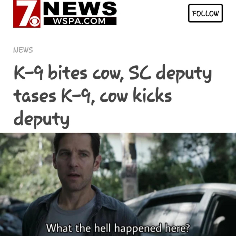 SC Headline - meme