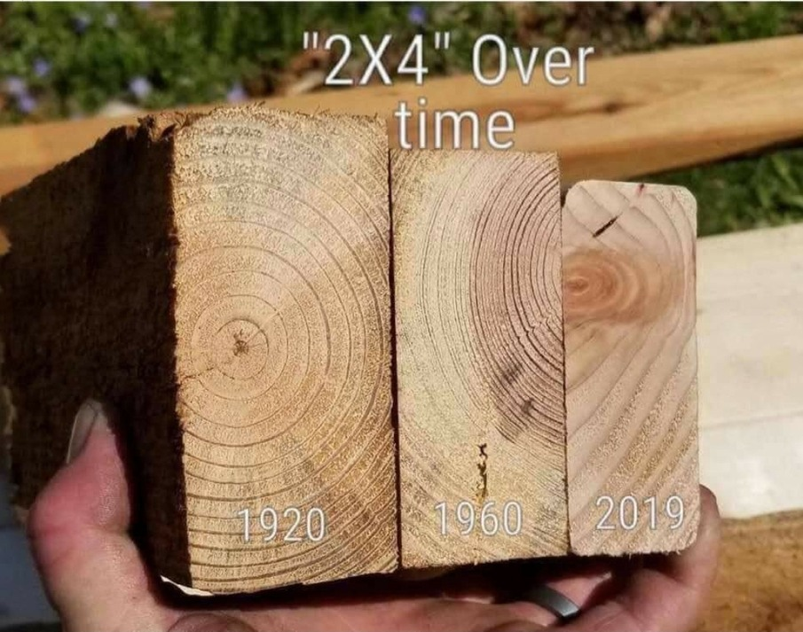 Why can't we use real wood anymore? - meme
