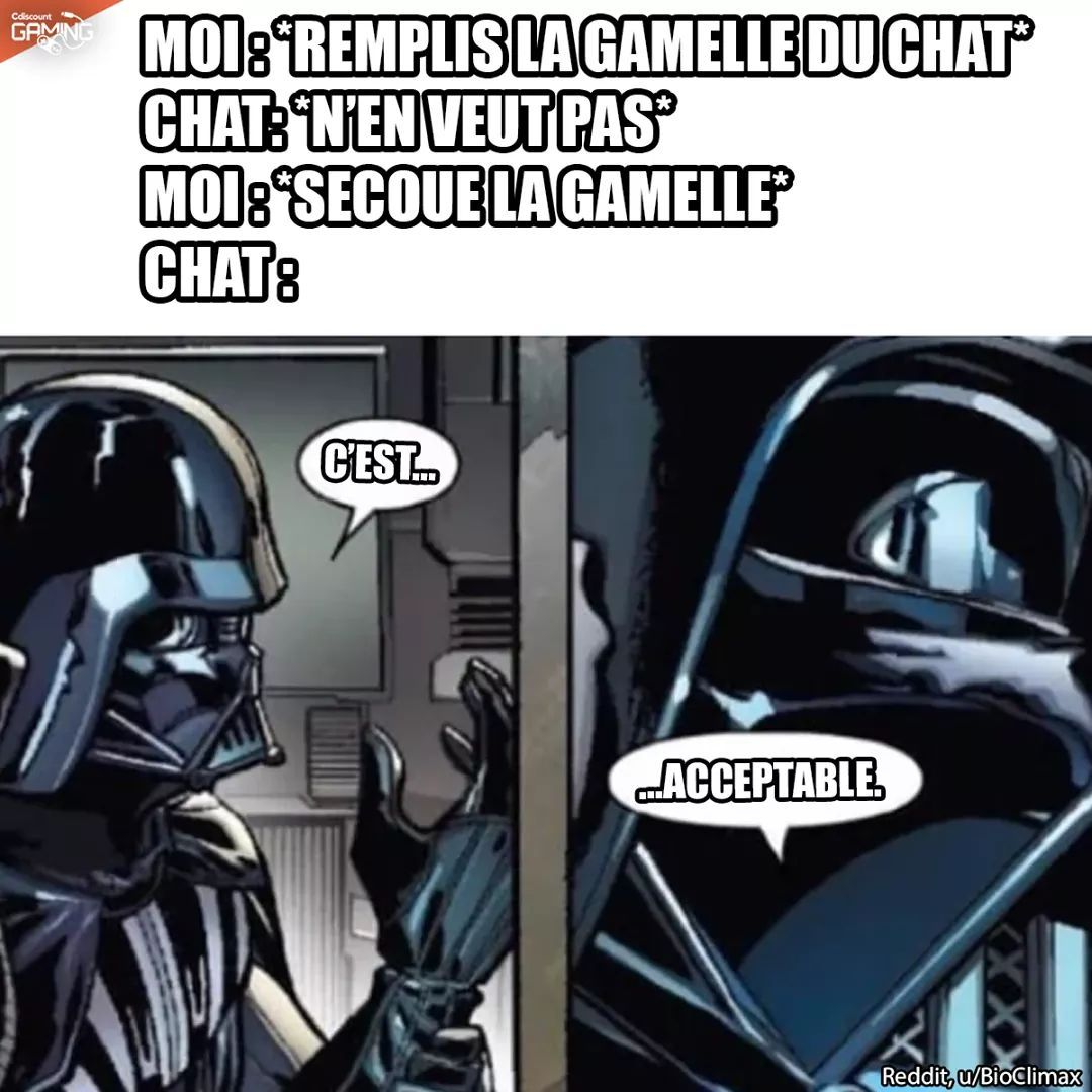 Geekfest 2020 à Angers ! (*o*) - meme