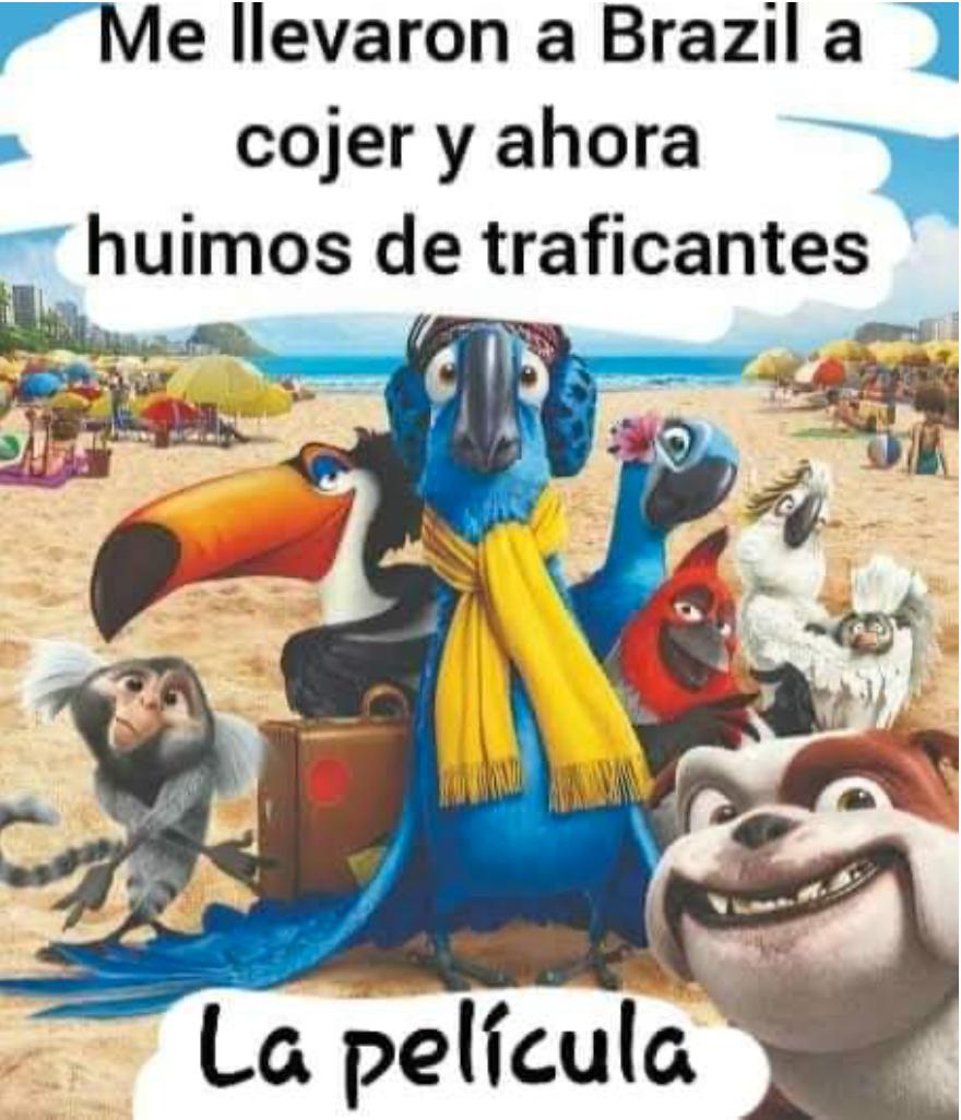 ME LLEVARON A BRAZIL  A COJER Y AHORA HUIMOS DE TRAFICANTES LA PELICULA - meme