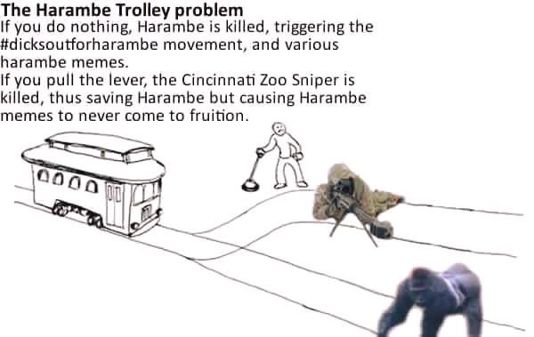 The Harambe trolley problem :'(( - meme