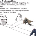 The Harambe trolley problem :'((