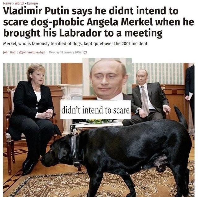 Angela Merkel does not like dogs - meme
