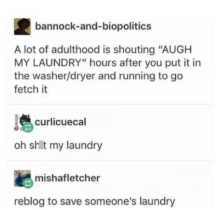 go get your laundry - meme