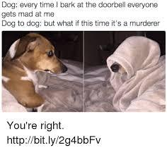 Dogs are really smart - meme