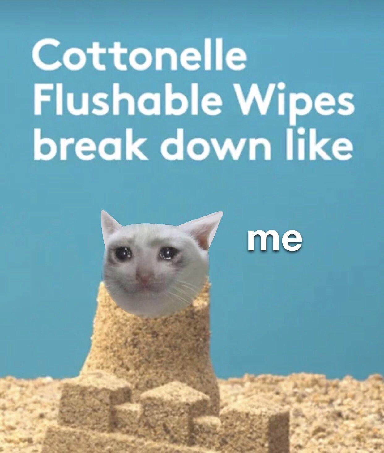 Sad flushing noises - meme