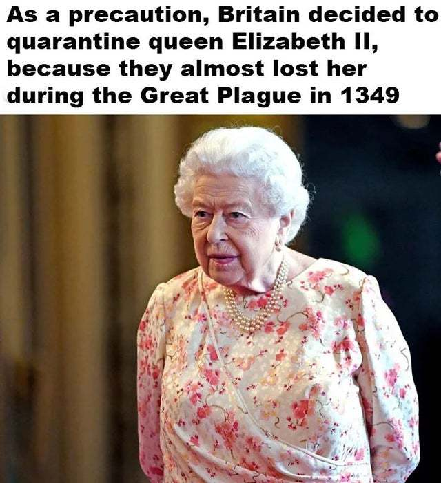 Britain decided to protect Elizabeth II because they almost lost her during the Great Plague in 1349 - meme