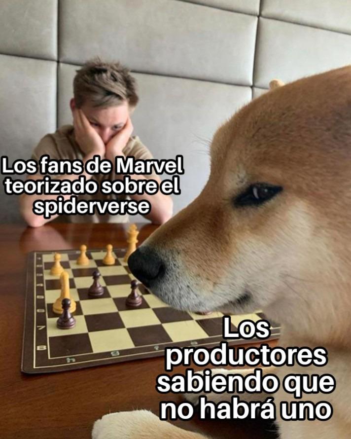 SpiderVerse confirmado - meme