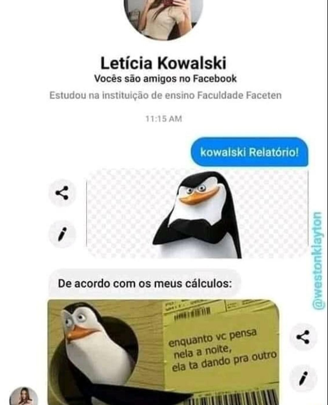 Kowalski análise - meme