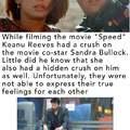 Good Keanu could have banged Sandra Bullock