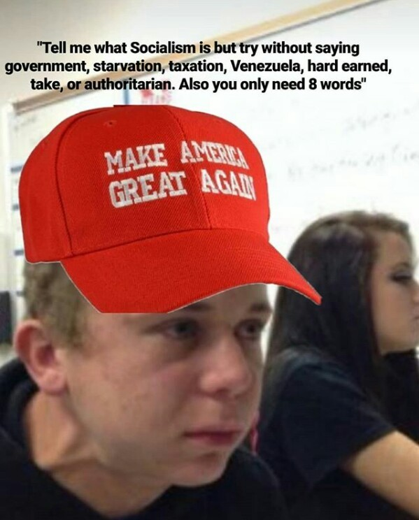 Socialism is when the gubermen does the things - meme
