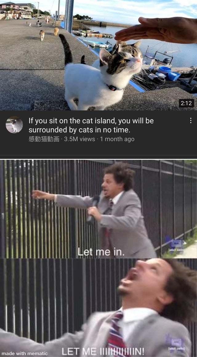 Im Raiding This Place Next - meme