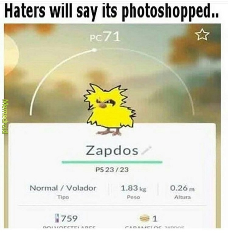 zapdos is real - meme