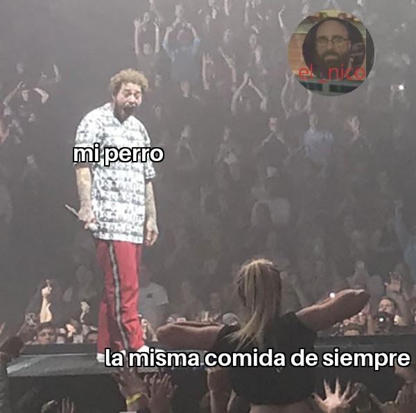 Dkkz - meme